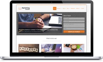 Marketing Consultant WordPress Theme